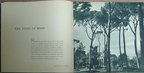 The Pines of ROME 2.jpg